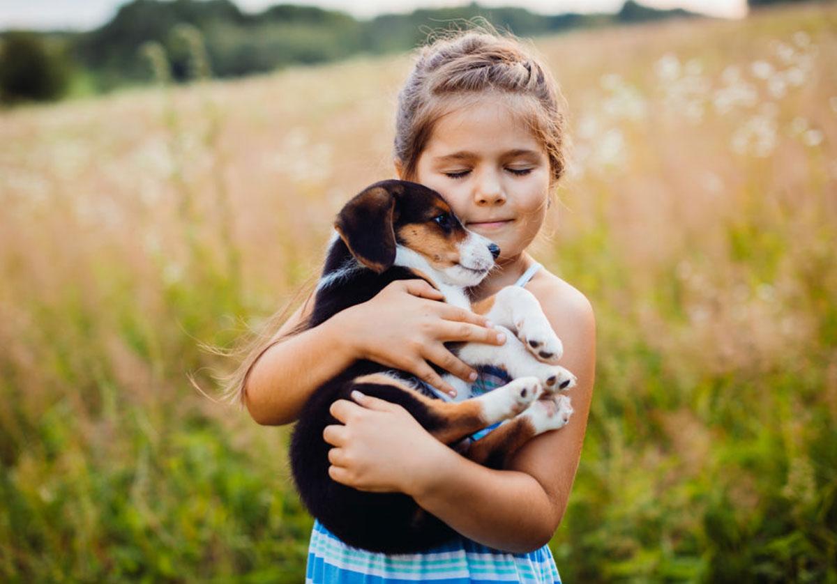 Blogg - Godt inneklima med kjæledyr